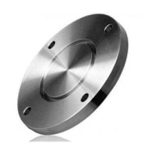 ANSI SS304 SS316L Stainless Steel Flange